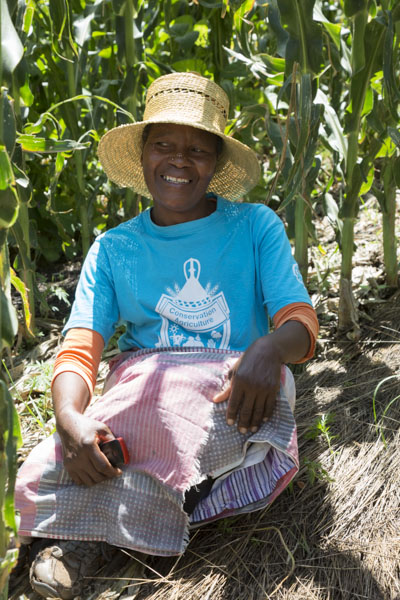 Proud Basotho farmer taught CA by Growing Nations sits on the mulch covering the ground under her first year maize crop.