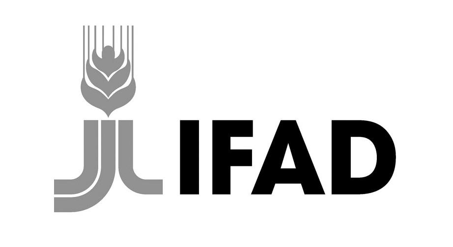 UN International Fund for Agricultural Development logo